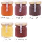 お試しサイズ 砂糖のかわりにハチミツたっぷり 手作りハニージャム 50g 全5種類