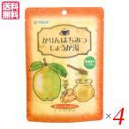 生姜湯 しょうが湯 生姜茶 かりんはちみつしょうが湯 (12g×5) 4袋セット マルシマ 送料無料