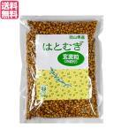 はと麦 はとむぎ 玄麦粒渋皮付 300g TAC21 送料無料
