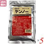 小豆 粉末 粉 ツルシマ ヤンノー 深煎り小豆の粉 100g 5袋セット 送料無料