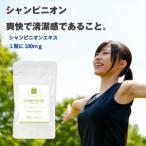 Yahoo!サプリメント健康茶専門店ふくやシャンピニオン サプリ 約3ヶ月分・90粒 シャンピニオンエキス サプリメント 年齢ケア セール
