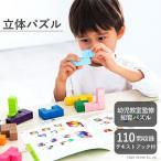 立体パズル エドインター 知育玩具 木製玩具 木製ブロック おもちゃ 型はめ 子ども玩具 ブロック遊び 入園祝い 誕生日プレゼント 知の贈り物シリーズ