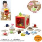 びっくり特典あり たっちゃん げす(Touch&Guess)  知育玩具 教育玩具 ブ…