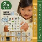 頭がよくなるマグカップシリーズ2個セット おしゃれ かわいい 知育 教育 ギフト 人気 イラスト インテリア おすすめ 個性的 子供 国産 日本製