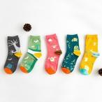 Regular Socks - 靴下 ソックス レディース 22-24cm 5足セット プレゼント お買い得 送料無料 A064