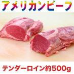 アメリカンビーフ 牛ヒレ デカ肉ブロック 約500g