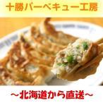 ショッピング原 PB商品 十勝餃子 25g 30個  スタミナ