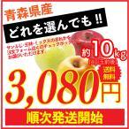 りんご 10kg 訳あり 青森県産 送料無料 葉取らずりんご 40玉前後 蜜入り サンふじ 王林 ぐんま名月 あいかの香り リンゴ 林檎 お得用 果物 フルーツ