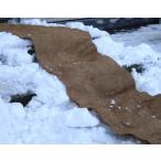 雪国カーペット  大判・長さ5m×幅60cm(2枚組)   凍結転倒防止用マット