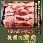【猪肉】500g 自然の野山で育った上質のイノシシ肉を直送・ぼたん鍋 ジビエ