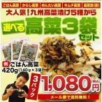 高菜 たかな漬 辛子高菜 からし高菜 ごはん高菜 セール ポイント消化 送料無料 メール便発送