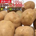 【送料無料】春じゃが【日本一】じゃがいも 長崎県島原産馬鈴薯10kg【鉄腕DASH!】ジャガイ...