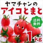 雅虎商城 - 【送料無料】アイコトマト1Kg【長崎県産】やまちゃんのアイコとまと