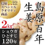 長崎県産 新しょうが 2kg 令和2年産【 新生姜 ショウガ 】【 送料無料 】