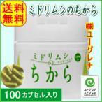 ミドリムシのちから・100粒+30粒/ユーグレナ開発・みどりむしミドリムシ/乳酸菌