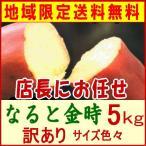 さつま芋【なると金時】店長お任せ5Kg/【徳島より発送】