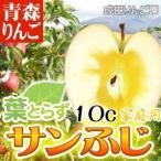 【送料無料】なりたりんご園 家庭用 葉とらずサンふじ 約10kg箱 リンゴ 林檎 フルーツ デザート 贈り物 贈答品 プレゼント ギフト お見舞い 産地直送
