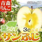 なりたりんご園 家庭用 葉とらずサンふじ 約3kg箱