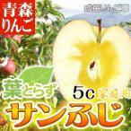 【送料無料】なりたりんご園 家庭用 葉とらずサンふじ 約5kg箱 リンゴ 林檎 フルーツ デザート 贈り物 贈答品 プレゼント ギフト お見舞い 産地直送