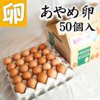 【送料無料】あやめ卵 50個 生卵 玉子焼き 卵かけごはん 新鮮 農場直送 贈り物 プレゼント お礼 スイーツ お見舞い オムライス お祝