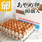 【送料無料】あやめ卵 80個 生卵 玉子焼き 卵かけごはん 新鮮 農場直送 贈り物 プレゼント お礼 スイーツ お見舞い オムライス お祝