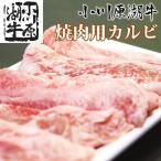 小川原湖牛 カルビ 500g(タレ付き)