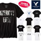 アメリカンイーグル 半袖 Tシャツ USAモデル メンズ AE American Eagle  ae77