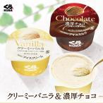 カップアイス クリーミーバニラ&濃厚チョコ 各6個セット くら寿司 無添加 送料無料 デザート おやつ 甘さ控えめ