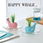 栽培キット HAPPY WHALE ハッピー ホエール 栽培セット クジラ 鯨 くじら 植物 グリーン ハーブ 芝生 芝 インテリア かわいい オシャレ
