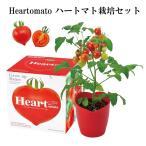 栽培セット Heartomato ハートマト栽培セット 栽培キット トマト ハート 野菜 インテリア 置物 グッズ