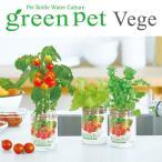 セパレート型のペットボトルで野菜を育てる水耕栽培セット