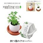 栽培キット eggling eco friendly エッグリング エコフレンドリー 四つ葉のクローバー 「即納」 栽培セット グリーン 四つ葉 クローバー タマゴ たまご