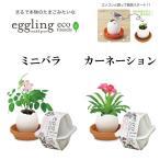 『栽培セット』 eggling eco friendly エッグリング エコフレンドリー ミニバラ カーネーション 「即納」 栽培キット バラ 薔薇 ばら 母の日 花 タマゴ たまご