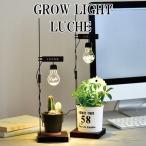 GROW LIGHT LUCHE グローライトルーチェ 間接照明 LED LEDライト ライト 照明 スタンドライト 卓上 おしゃれ かわいい ギフト プレゼント 人気