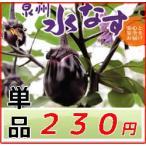 大阪泉州特産 水茄子 1個 約150g A品 贈答向け品質  水ナス 水なす
