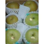 最高品質詰め合わせ 二十世紀梨 豊水梨 2キロ大玉6個前後入 贈答向け秀品 豊水 梨 20世紀梨 20世紀 二十世紀 和梨