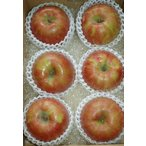 サンつがる 特選品質 約2kg 大玉6玉入 りんご リンゴ 林檎ト