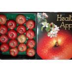 サンふじ りんご 贈答用 特選品質  約5kg 大玉13〜16個 化粧箱入 リンゴ 林檎 さんふじ サンフジ