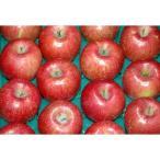 サンふじ 贈答用 特選品質 約10kg 大玉26〜32個前後入 リンゴ 林檎 さんふじ サンフジ ギフト