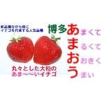 12月以降分予約 福岡産 あまおう 苺 デラックスパック 2パック いちご イチゴ S10