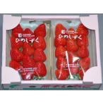 超美麗な新品種イチゴ 熊本県産ひのしずくデラックスパック2パック入 苺 いちご