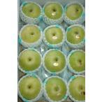 二十世紀梨 約5キロ 大玉12〜14個 化粧箱入 贈答向け 秀品 梨 20世紀梨 20世紀 二十世紀 和梨