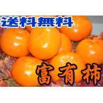 富有柿 贈答用 秀品 約7.5kg 2L〜3L 25個前後入 ギフト 和歌山か奈良産