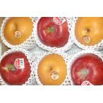 礼盒 - 2019年予約 長野産 南水梨 シナノスイート 2キロ 贈答用 秀品 大玉5〜6個入 梨 リンゴ りんご 林檎 南水 ギフト
