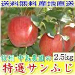 長野産 減農薬 りんご 糖度15度以上保証! サンふじ 贈答用 約2.5kg7〜8個入 林檎 リンゴ 産地直送 SSS