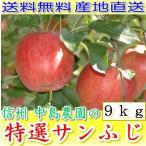 長野産 減農薬 りんご サンふじ 贈答用 約9kg24〜32個入 林檎 リンゴ 産地直送 SSS