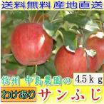 【訳あり】長野産 減農薬 りんご サンふじ 約4.5kg12〜16個入 林檎  リンゴ 産地直送 SSS