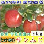 【訳あり】長野産 減農薬 りんご サンふじ 約9kg24〜32個入 林檎 リンゴ さんふじ サンフジ 産地直送 SSS
