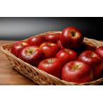 ポイント10倍 11月上旬~11月中旬以降の発送予定産地直送 長野産 減農薬 有機肥料使用 シナノスイート ご家庭用 約9kg 16〜50個入 完熟 リンゴ りんご