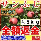 ポイント10倍産地直送 長野 減農薬 有機肥料使用 サンふじ ご家庭用 約4.5kg12〜25個入 完熟 林檎 リンゴ りんご 訳あり